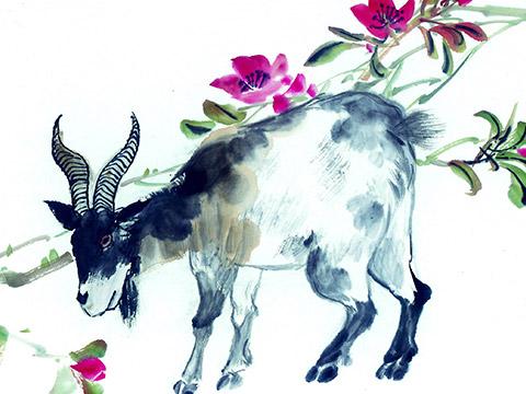 「屬羊」的圖片搜索結果