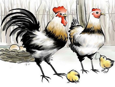 Image result for 屬雞