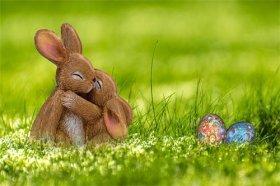 1975年出生属兔女一生婚恋运,婚后生活平淡幸福