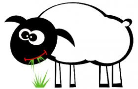 2003年属羊人2020年运势男性  18岁生肖羊2020年每月运程男