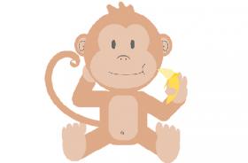 2004年属猴人2020年运势男性  17岁生肖猴2020年每月运程男
