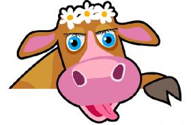 2009年属牛人2020年运势男性  12岁生肖牛2020年每月运程男
