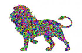 2010年属虎人2020年运势男性  11岁生肖虎2020年每月运程男