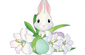 2011年属兔人2020年运势男性  10岁生肖兔2020年每月运程男