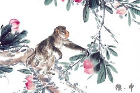 1992年属猴的人2021年运程-92年出生30岁属猴2021年运势