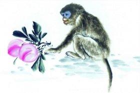 2004年属猴的人2021年运程-04年出生18岁属猴2021年运势