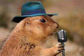 2021年属鼠人的幸运数字是什么,属鼠人在辛丑牛年的开运数字